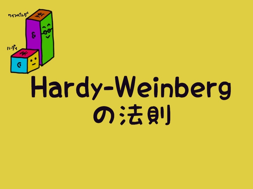 Hardy-Weinbergの法則
